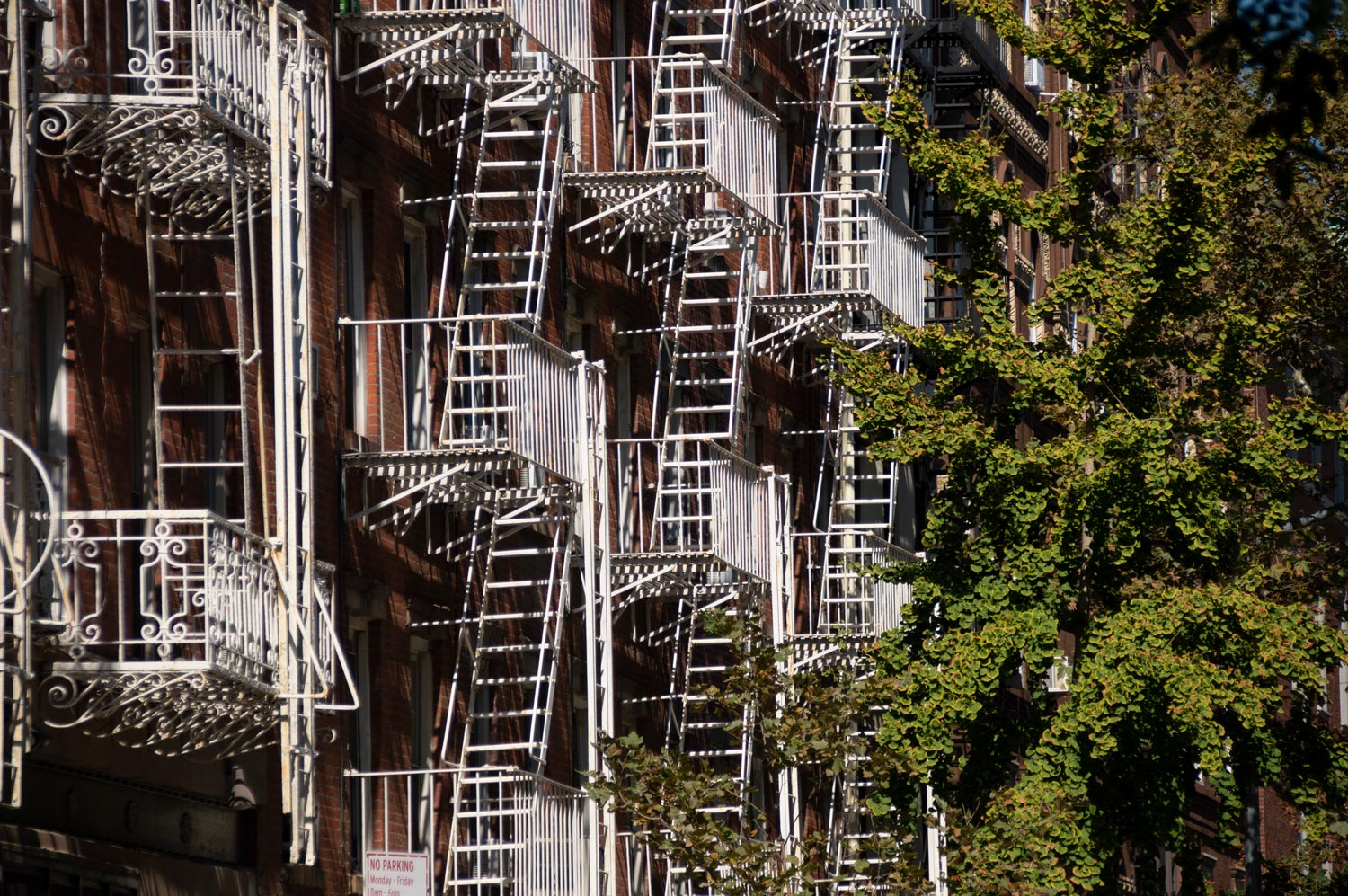 You are currently viewing Fire Escapes
